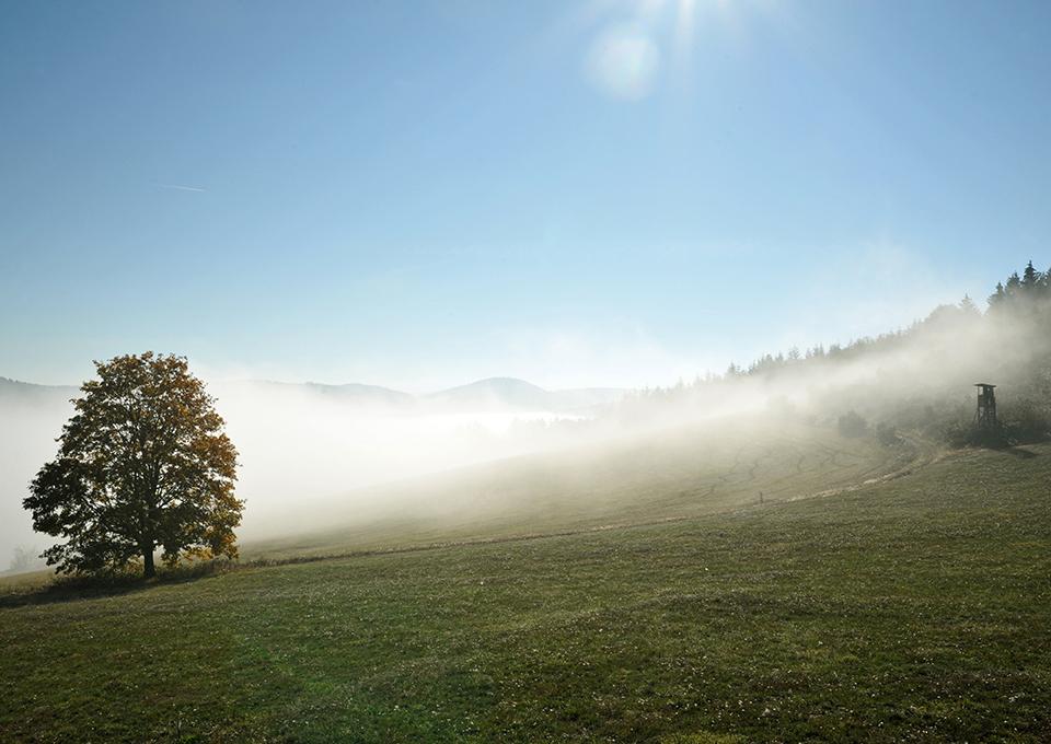 Naturparadies bad Berleburg